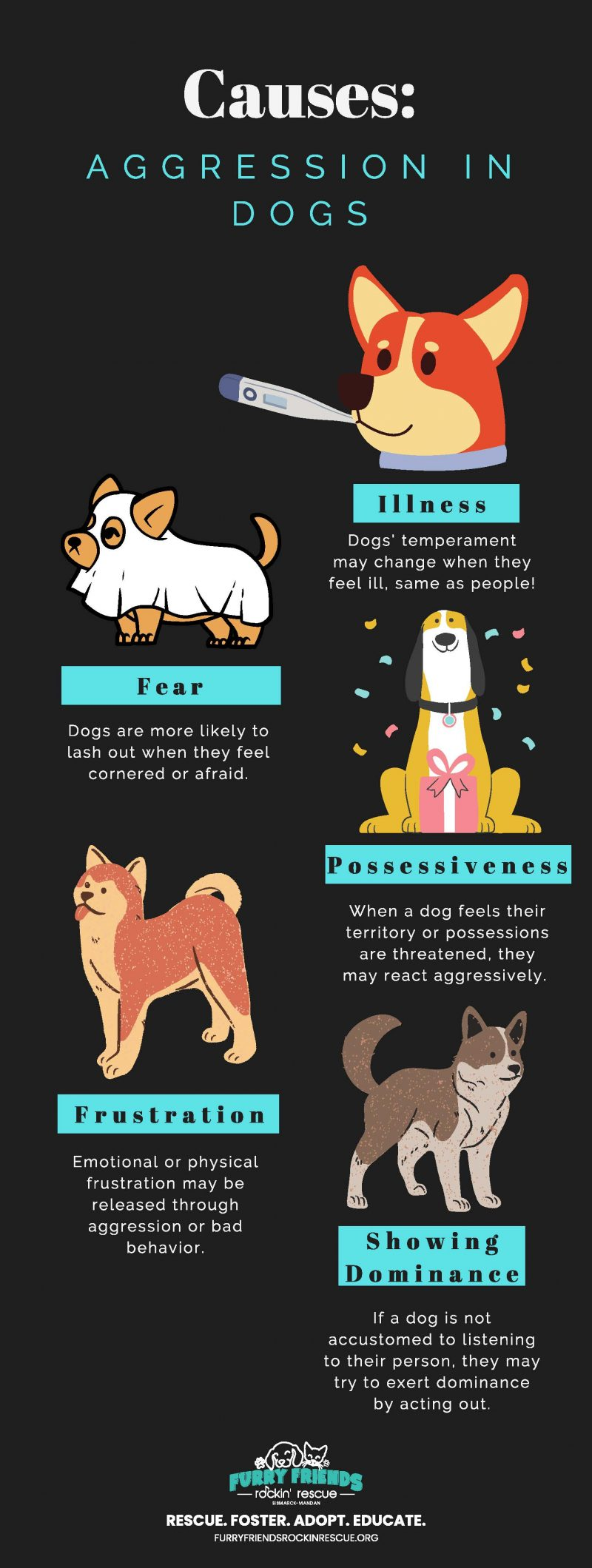 Causes of aggression in Dogs Infographic - Furry Friends Rockin' Rescue